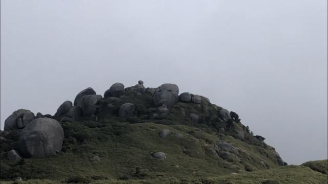 屋久島 ヤク猿岩