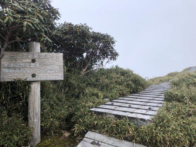 ローソク岩展望台